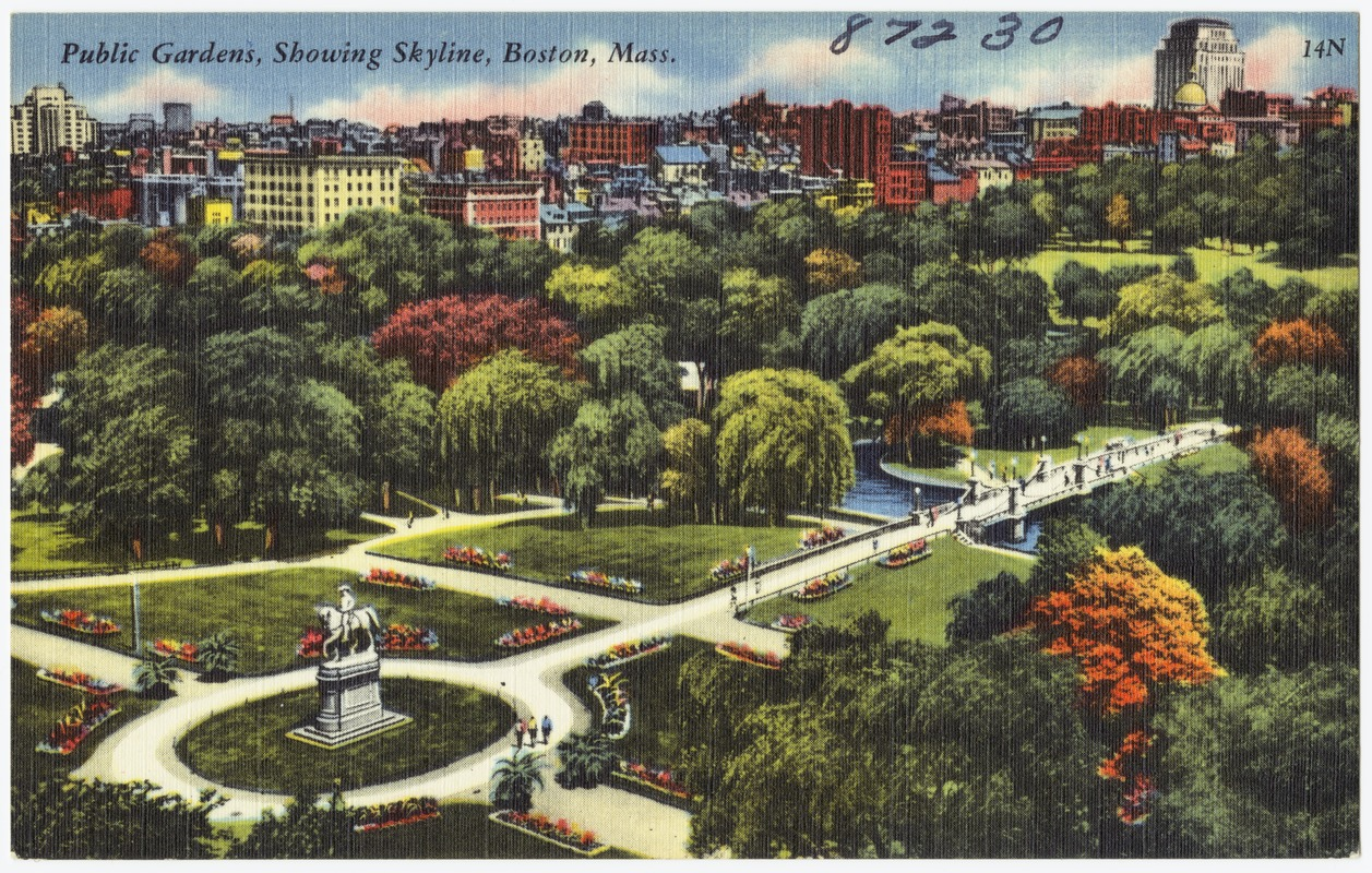 Public Gardens, showing skyline, Boston, Mass.