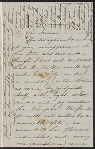 Sophia Hawthorne autograph letter signed to Annie Adams Fields, [Concord], 29 June 1862
