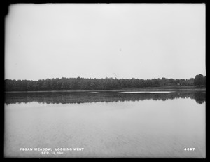 Sudbury Department, improvement of Lake Cochituate, Pegan Meadow looking west, Natick, Mass., Sep. 12, 1901