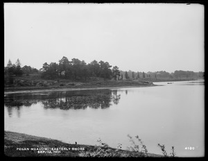Sudbury Department, improvement of Lake Cochituate, easterly shore of Pegan Meadow, Natick, Mass., Sep. 12, 1901