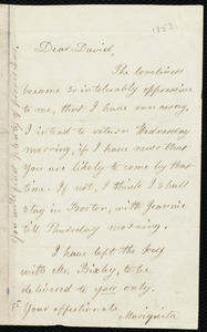 Letter from Lydia Maria Child to David Lee Child, [1853]