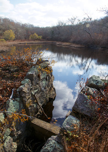 Ganz - Holly Holm - Paint Mill Pond - Trout Pond
