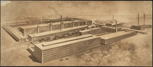 [Pacific Mills Cotton Department, Lawrence, Mass.] [graphic]