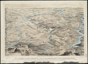 Stannard & Son's, perspective view, of the immediate seat of war & recent battle fields, shewing all the fortifications and natural barriers of the districts lying between the Rhine and Meuse, with the important passes of the Vosges and points d'appui of the two armies, the lines of defence and probable points of attack