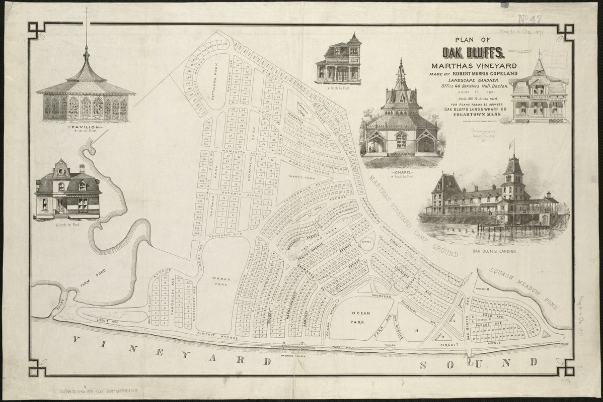 Plan of Oak Bluffs, Marthas Vineyard