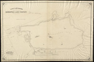 Plan of land in Sharon belonging to the Massapoag Lake Company