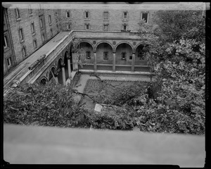 Downed trees in Boston Public Library courtyard