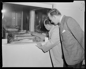 Adlai Stevenson and another man looking into the hospital nursery