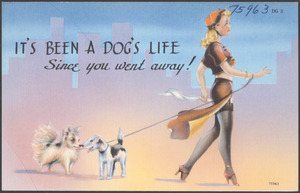 It's been a dog's life since you went away!