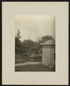 Newton Photographs Collection : Miscellaneous Newell family photographs, 1800s-1900s - House Obscured by Trees -