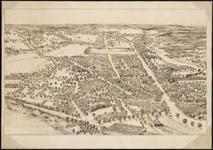 View of Dedham, Mass. in 1876