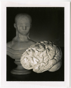 Photograph of Laura Bridgman's bust statue and brain model