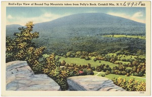 Bird's-eye view of Round Top Mountain taken from Polly's Rock, Catskill Mts., N. Y.