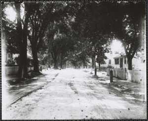 198 Old King's Highway on right (looking west)