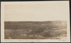 Looking across marshes, end of Wharf Lane, Yarmouth Port, Mass.