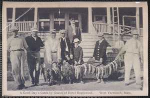 A good day's catch by guests of Hotel Englewood, West Yarmouth, Massachusetts