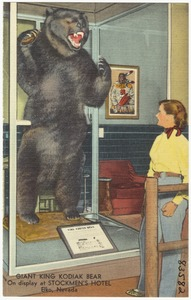 Giant King Kodak Bear, on display at Stockmen's Hotel, Elko, Nevada