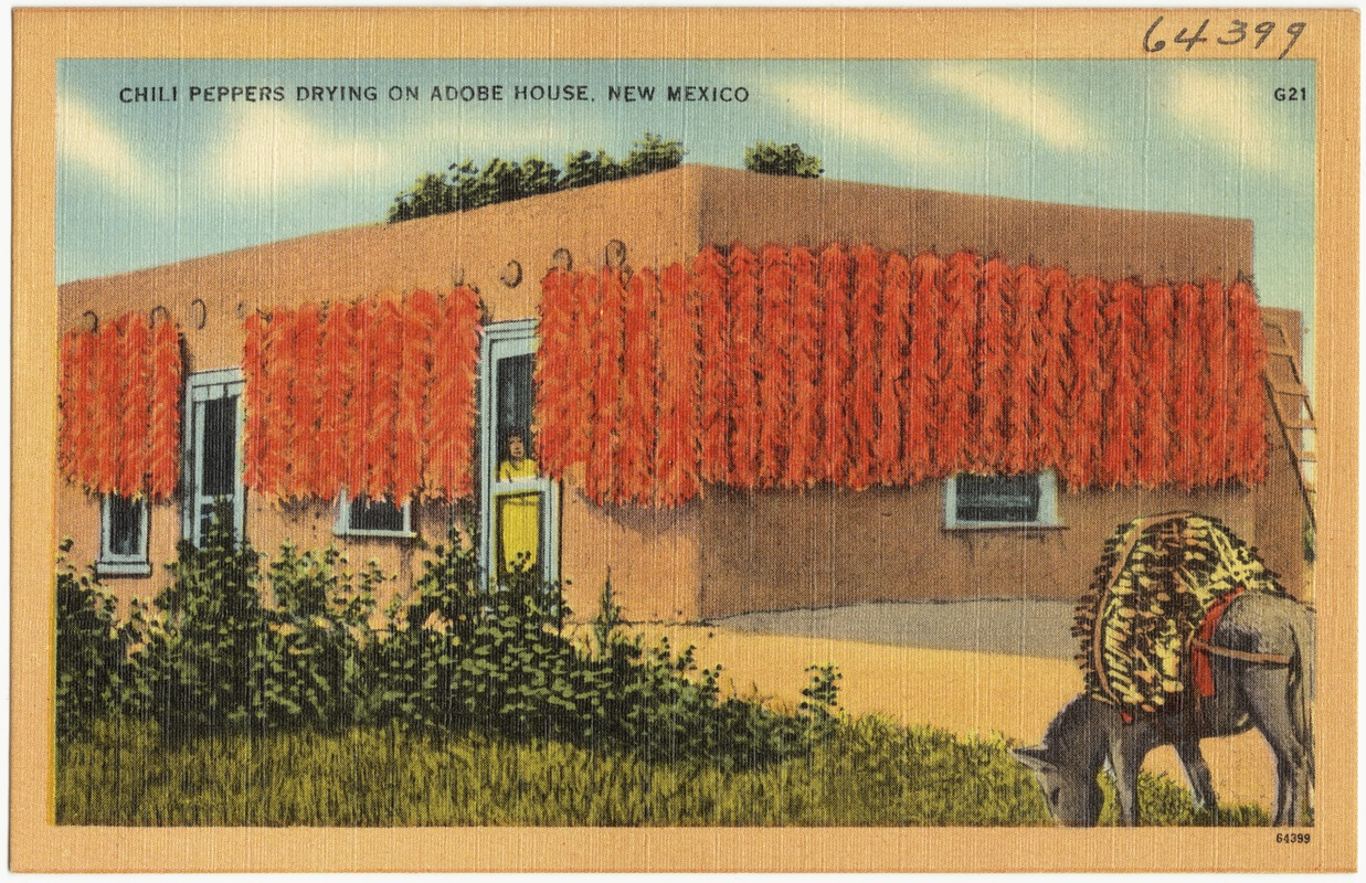 Relatively Collection: Tichnor Brothers Postcard Collection / Institution  DB14