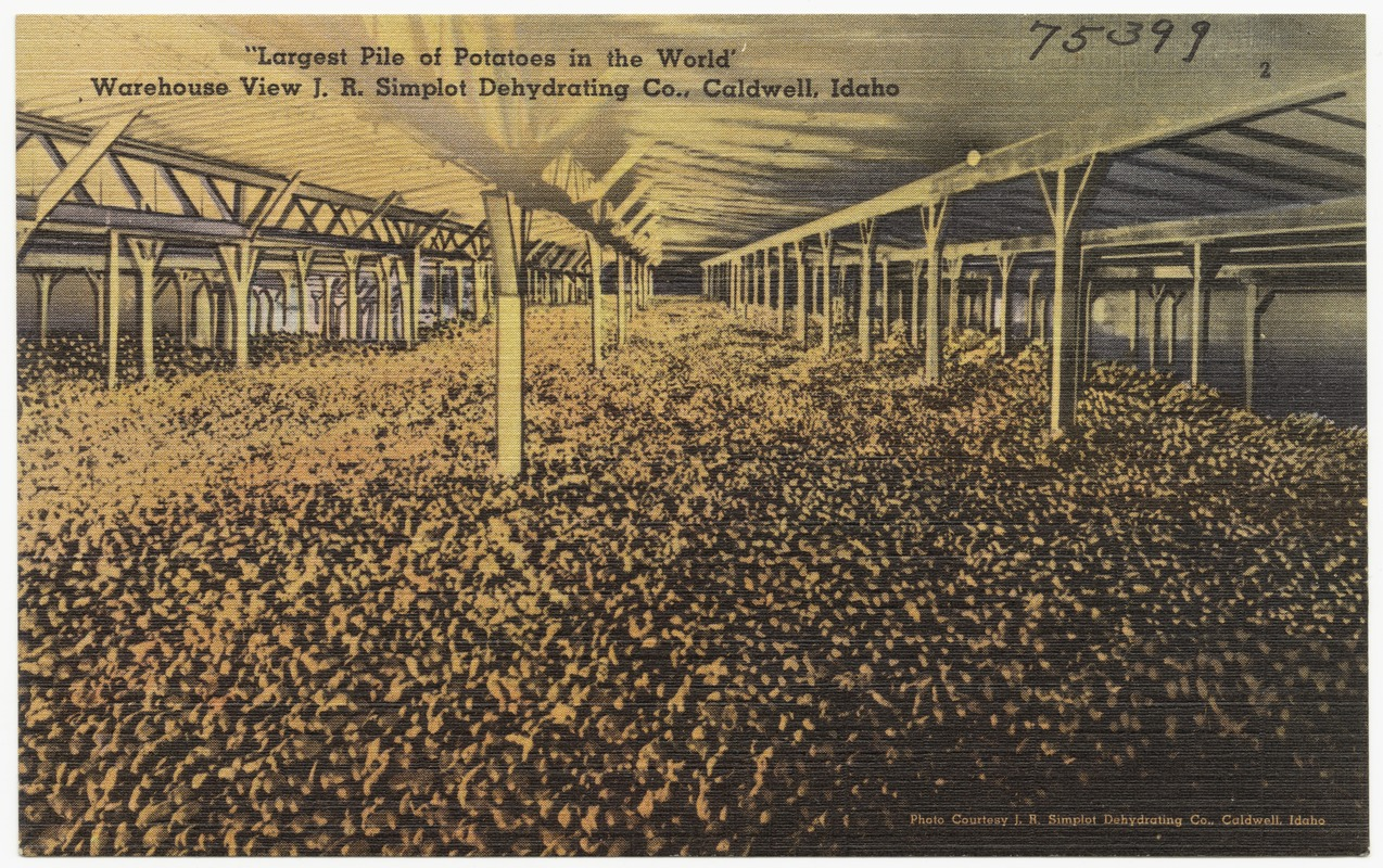 """Largest pile of potatoes in the world,"" warehouse view J.R. Simplot Dehydrating Co., Caldwell, Idaho"