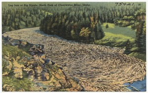 Log jam at Big Ripple, North Fork of Clearwater River, Idaho