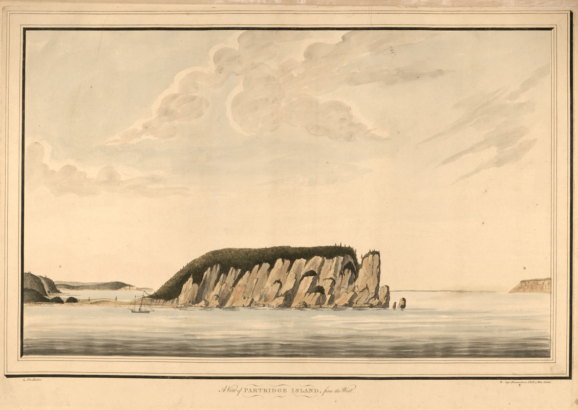 A view of Partridge Island, from the west