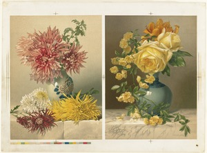 Chrysanthemums and Mareshal Niel Roses