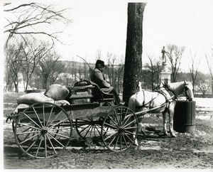 F.A. Gurney's delivery wagon and driver