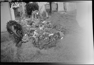 The grave of George Russell (AE) in Mt. Jerome Cemetery, Dublin, two days after his burial